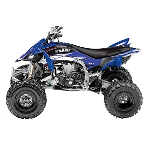 EVO 14  Graphic Kit Raptor 700 06-18